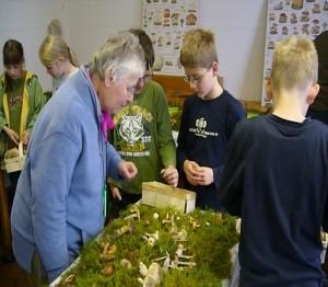 Fundauswertung und Ausbau einer Pilzausstellung mit Brigitte Schurig