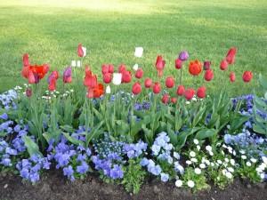 Natürlich mit den zur Jahreszeit passenden Blumen.