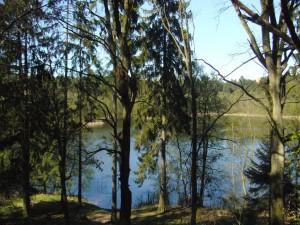 Sandsee im Naturpark Nossentiner/Schwinzer Heide am 19. April 2009.