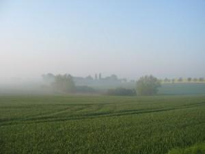 Der Nebel lichtet sich am Morgen des 30. April 2009.