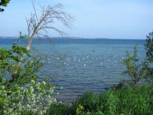 Die Ostsee an der Wohlenberger Wieck am 10. Mai 2009.