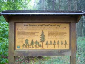 Das Umdenken in der Forstwirtschaft hat begonnen.