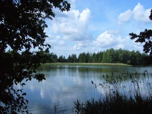 Mahlerisch liegt der Farpener Stausee in einer Landschaft aus Wiesen, Felder und Wälder eingebettet. 06. Juni 2009.