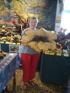 Doris Waitschies brachte am 30. Juni 2009 diesen riesigen Schuppigen Porling in die Pilzberatung. Da man ihn in diesem Stadium nicht mehr essen kann, stiftete Sie ihn für die Ausstellung. 65.00 cm Hutdurchmeßer und ca. 8.0 Kg gewicht.