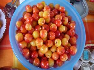 Frische Kirschen aus dem eigenen Garten gab es auch.