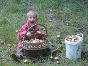 Unser kleiner Joni hat kräftig beim Sammeln mitgeholfen und ist begeistert über so viele Pilze. 20. Juli 2009.