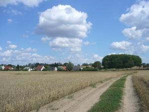 Der Sommer hat seinen Höhepunkt erreicht. Blick auf die Ortschaft Gagzow, unweit der Hansestadt Wismar am 31. Juli 2009.