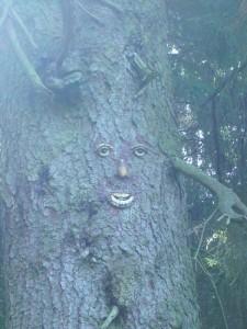 Am Wegrand stand eine mächtige Fichte und schaute uns grimmig an. Schert euch aus dem Wald und lasst mir meine Pilze, ich brauche sie zum Leben!