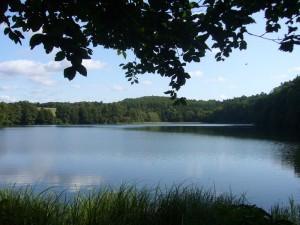 Uwischen dem Roten See liegr auf deem Weg zum Deichelsee noch der Hohlsee.