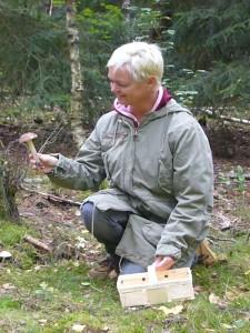 Freude kommt auf, wenn so ein schöner Birkenpilz das Herz der Pilzsucherin höher schlagen läßt. 13.09.2009.
