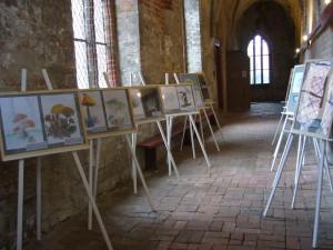 Auch ein Pilzbilder - Malwettbewerb von Rehnaer Schülern fand zum wiederholten male anläßlich der Tage der Pilze statt. Die besten Arbeiten wurden wieder in einer Staffelei der Pilzausstellung angegliedert.