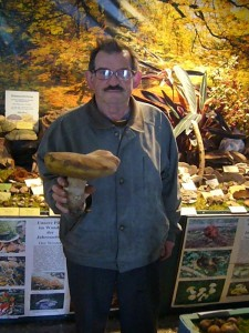 Diesen großen Steinpilz fand Pilzfreund Hans - Jürgen Wilsch gestern und stifftete ihn heute für unsere Ausstellung. Gewicht: 990 Gramm!