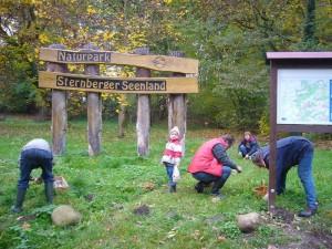Ortswechsel! Direkt in Gädebehn, am Eingang zum Naturpark Sternberger Seenland brach der Hallimasch - Wahnsinn los.