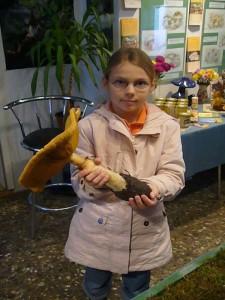 Genia Diehl aus Schmakentin fand mit ihren Eltern am Wochenende in der nähe ihres Wohnortes diesen Riesenpilz, einen Goldfarbenen Glimmerschüppling und brachte ihn mit ihrer Mutter zur Pilzberatung. Da am Standort noch weitere Pilze stehen, spendierte sii ihn für unsere Ausstellung. 02.11.2009.