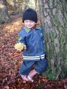 Unser kleiner Jonas bewundert eine Krause Glucke, die er am Fuß dieser alten Kiefer fand. 15.11.2009 im Wald bei Demen.