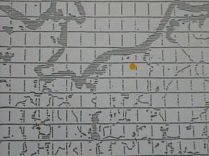 Agaricus langei (Möll. & J.Schff.) Möll.