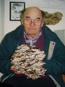 Voller Freude kam Josef Gast am 17. November 2000 zu mir in die Pilzberatung und präsentierte mir diesen Klapperschwamm den er heute auf seiner Pilztour fand.