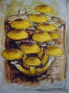 Honiggelber Hallimasch (Armillaria mellea)