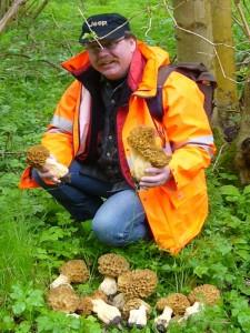Thomas hatte mal wieder den tollsten Fund zu verbuchen. So ein Märchenhaftes Morchelvorkommen hatte noch keiner von uns gesehen. Es handelt sich um die Dickfuß - Morchel (Morchella esculenta var. crassipes). Ein unvergessliches Erlebnis! 15. Mai 2010.