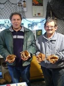 Unsere Pilzfreunde Peter Kofahl und Hans - Jürgen Wilsch fanden heute auf einer Exkursion durch den Wald zwischen Proseken und Zieruw die riesigen Flatschmorcheln. Diese nach Chlor riechenden becherlingsartigen Schlauchpilze sind nach der Zubereitung eine Delikatesse. Diese werden aber unsere Frischpilzausstellung bereichern. 18. Mai 2010.
