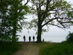 Und schließlich erreichten wir den Strand bei Zierow. Von hier aus kann man eigentlich die Insel Poel ausmachen, heute aber leider nichts zu machen. Zu dunstig war das Wetter. 22. Mai 2010.
