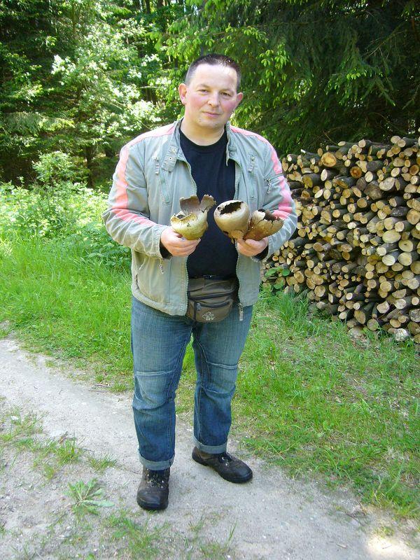 Hinter diesem Holzstapel fand Roland Lebendig diese sterilen Übereste von Hasen - Stäblingen. 05. Juni 2010.