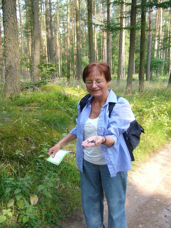 Erika Wittenhagen freut sich über die ersten reifen Heidelbeeren. 10. Juli 2010.
