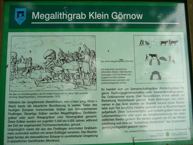 Unser hochsommerlicher Waldspaziergand endete am Großsteingrab bei Klein Görnow.