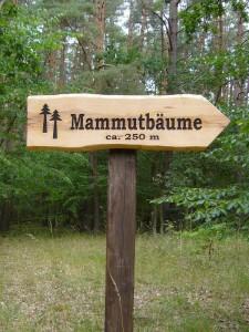 Von der Crivitzer Landstrasse aus sind es noch 250 m.