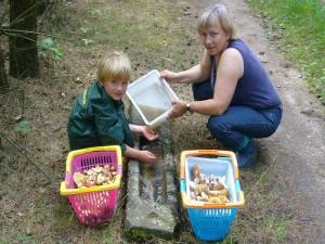 Zum Glück stehen im Wald noch Pfützen mit Regenwasser, denn das reinigen der Hände nach der Ernte von Körnchen - Röhrlingen und Butterpilzen ist ganz wichtig, sollen die Finder nicht längere Zeit schwarz aussehen. Jonas und seine Mama Irena am 10. August 2010