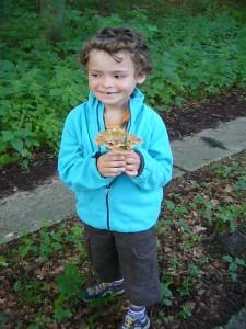 Dieser kleine junge aus Wuppertal freute sich sehr zu diesem Kerbrandigen Trichterling, der glich zu Beginn mit weiteren Artgenossen mitten auf dem Waldweg stand.