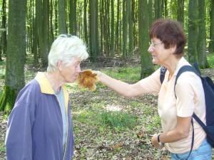 Obwohl der sehr angenehme Mandel/Marzipanduft des Morse - Täublings zum reinbeißen verleitet, wie Bärbel Wirth und Erika Wittenhagen hier gerade feststellen, ist er aber nicht schmackhaft und kann als ungenießbar eingestuft werden. 21. August 2010.