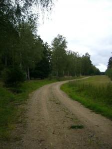Weitläufig sind hier die Wälder des ehemaligen Truppenübungsplatzes.