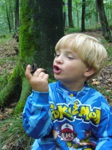 Wenn die Pilze schon Trompeten heißen, so müßte mann ihnen doch eigentlich auch Töne entlocken können, dachte sich Jonas heute. Aber leider nichts zu machen, sie eignen sich dann doch wohl eher zum Essen. 10.09.2010 im Haushat Forst.