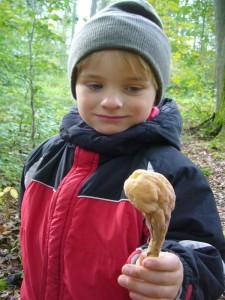 Auch mein Sohn Jonas war mal wieder mit von der Partie. Etwas verwundert betrachtet er hier die recht seltene Herkuleskeule (Clavariadelphus pistilaris). So ein merkwürdiger Pilz! 02.10.2010.