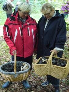 Das hat sich gelohnt! Herbsttrompeten ohne Ende. Die beiden Damen machen es richtig, wer weiß ob es im nächsten Jahr überhaupt welche geben wird. Siec werden getrocknet und liefern dann eine hervorragende Pilzwürze. 02.10.2010.