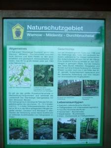 """Und dann ging es ab in`s Naturschutzgebiet """"Warnow - Mildenitz - Durchbruchstal""""."""