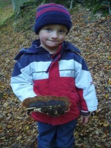 Einen Super - Fund machte hier Jonas Dombrowa mit dem Laubholz - Harzporling (Ischnoderma resinosum). 10.10.2010.