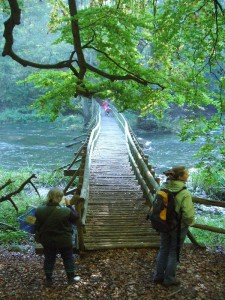 Wildromantisch auch diese Holzbrücke über einen Warnowbereich mit hoher Fließgeschwindigkeit, im eigentlichen Durchbruchtal mit steilen , bewaldeten Hangterassen. 10.10.2010.