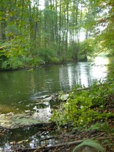 Romantisch, mal gemächlich, mal wild tosend schlängelt sich die Warnow durch Mecklenburg bis nach Warnemünde, wo sie in die Ostsee mündet. 10.10.2010.