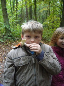 Kaum im Wald, war die Freude groß über die ersten Fundstücke. Die Nase ist mitunter unendbehrlich bei der Bestimmung. Der essbare Rote Heringstäubling riecht deutlich nach Fisch