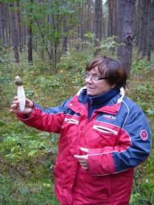 Insbesondere die Frauen scheinen immer wieder von der Form des Phallus impudicus (Gemeine Stinkmorchel), der Gemeinen Stinkmorchel, angetan zu sein. 16.10.2010.