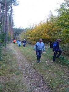Herbstlich bunt sind schon die Wälder. 24.10.2010