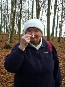 Der Geruch ist bei der Pilzbestimmung oft von großer Bedeutung. Dieser Gelbe Knollenblätterpilz riecht eindeutig kartoffelartig/muffig und ist schwach giftig! 13.11.2010.