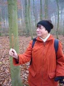 Welch phantastisch - schlanke Pilzgebilde! Nicht nur Erika Wittenhagen war begeistert von dieser eigenartigen, im allgemeinen recht seltenen Art.