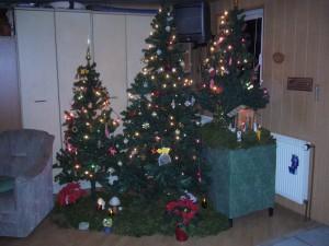 Wir Wünschen allen Pilzfreunden eine erholsame Weihnachtszeit und einen guten Rutsch in`s neu Pilzjahr 2011.