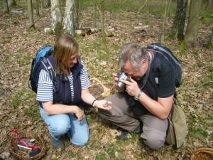 Die Rötlinge waren auch bei weiteren Pilzfreunden der heutigen Wanderung ein beliebtes Fotomotiv.