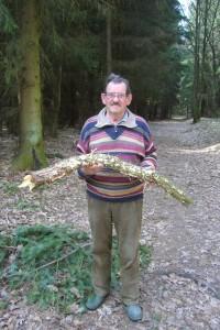 Weigstens einige Holzpilze konnten wir für unsere Pilzausstellung sicher stellen, so wie hier Pilzfreund Hans - Jürgen Wisch mit einem Ast voller Runzliger Schichtpilze.