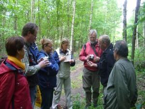 Interessiert lauschen die Teilnehmer der Wanderung den Ausführungen von Klaus Warning zum allgegenwärtigen Waldfreund Rübling.