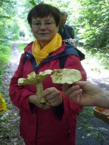 """Ganz verwundert mus Pilzfreundin Erika Wittenhagen hier zur Kenntnis nehmen, dass es sich bei diesen großen Blätterpilzen um alte Maipilze handelt """" Was?, die hätte ich als solches hier nicht erkannt"""" so ihr Komentar."""